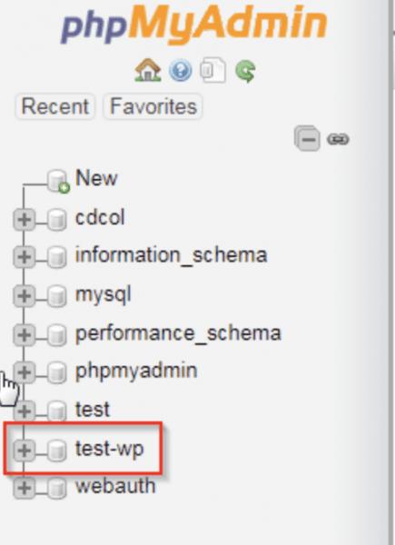 phpMyAdmin select the database